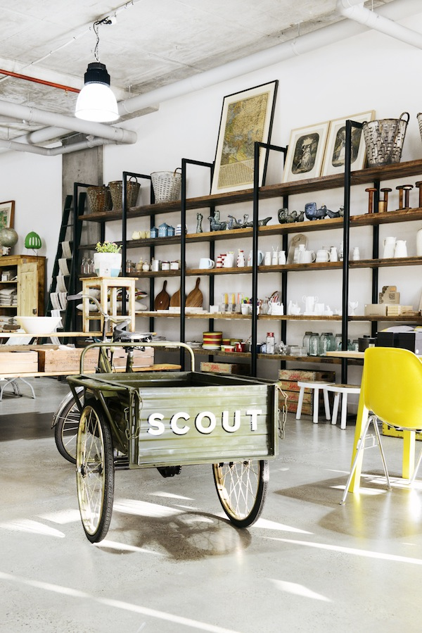 SCOUT 1771